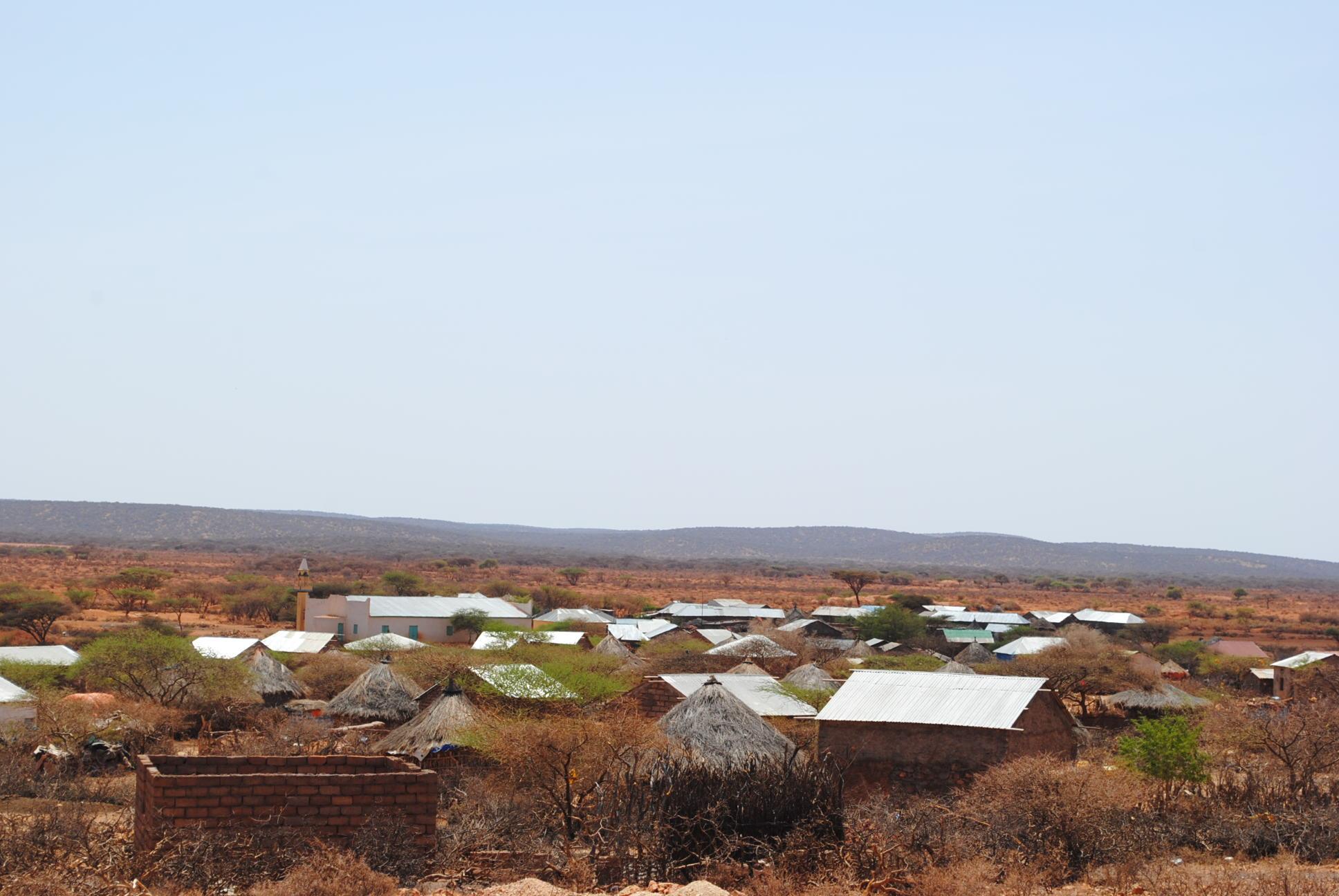 Hyenas kill villagers in northwestern Somaliland